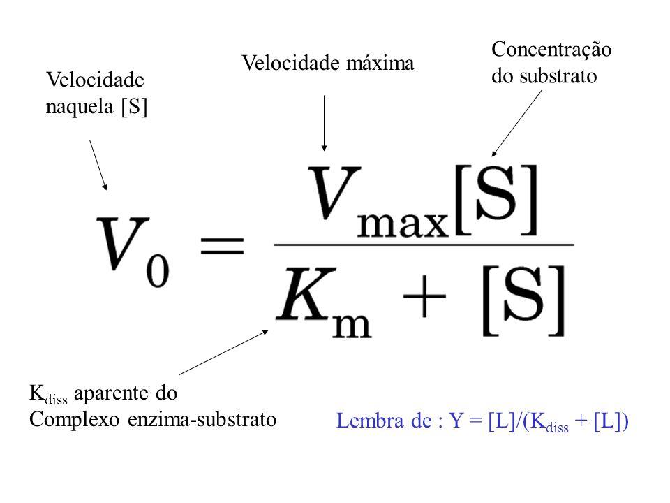 Concentração do substrato. Velocidade máxima. Velocidade. naquela [S] Kdiss aparente do. Complexo enzima-substrato.